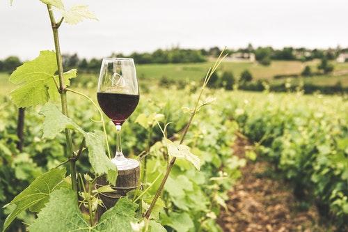 アーモンドに合う赤ワイン